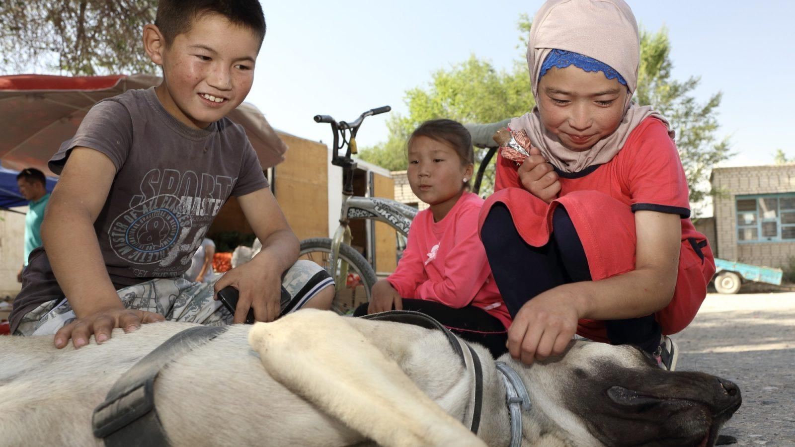 Kirgizija, osrednji del, Baetov