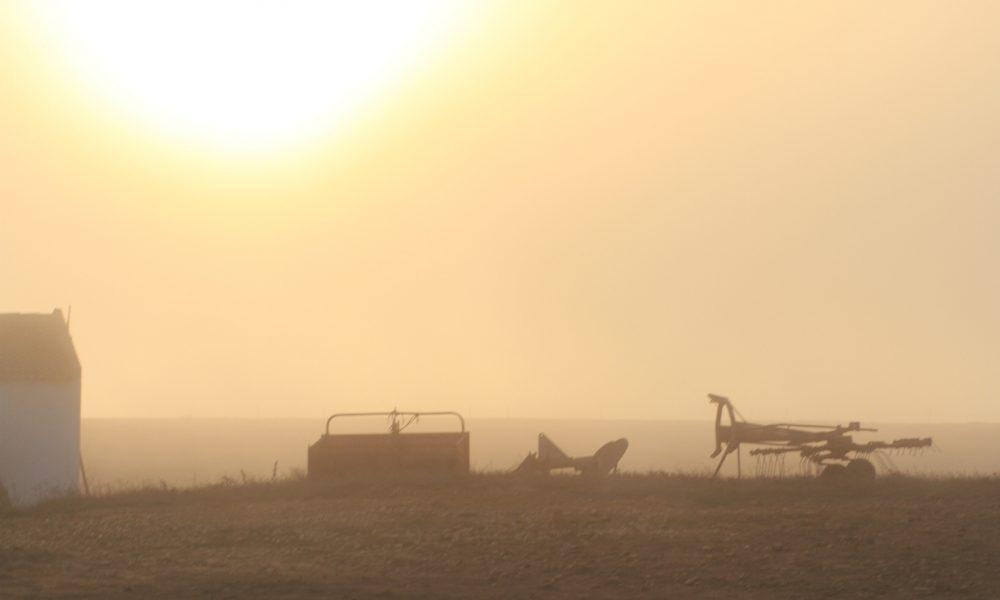 Kmetija, na robu